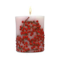 Acqua Di Parma Red Berries Candle 900g
